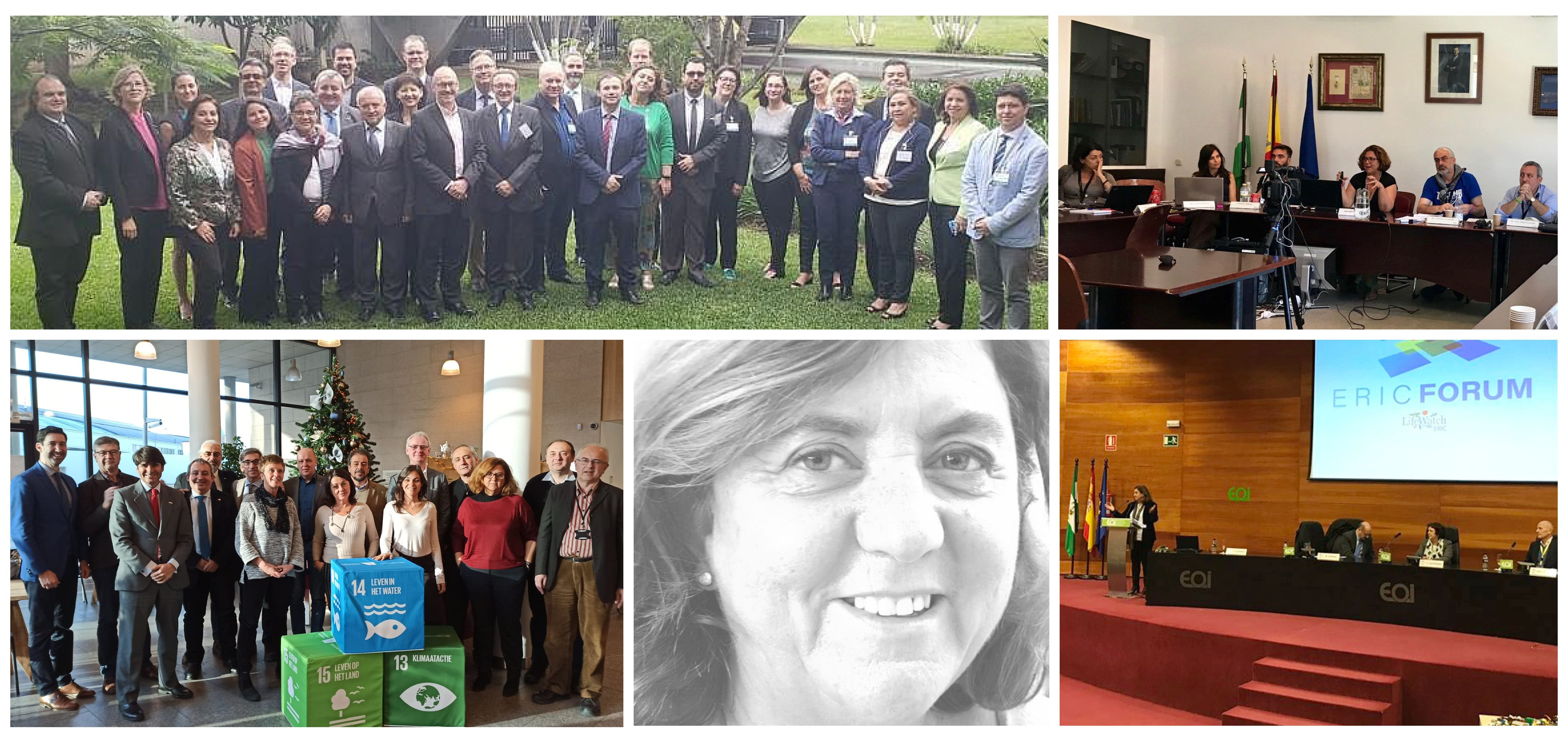 Inmaculada Figueroa, New Chair of LifeWatch ERIC General Assembly